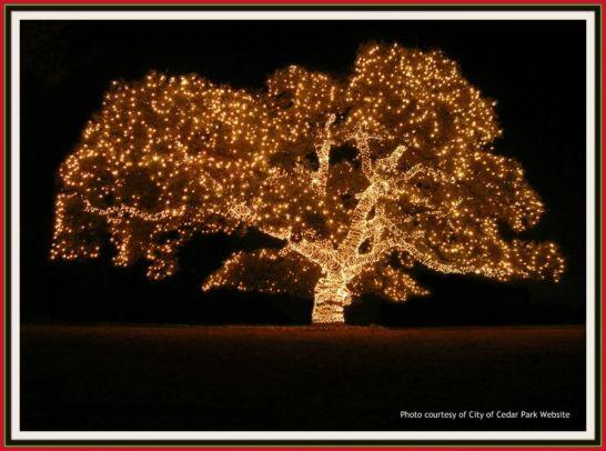 Cedar_Park_Christmas_Tree